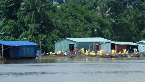 Tiếng kêu tuyệt vọng từ sông Đồng Nai: Nước thải hòa nước sông