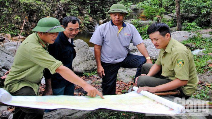 Bắc Giang xử lý nghiêm tình trạng phá rừng, lấn chiếm trái phép