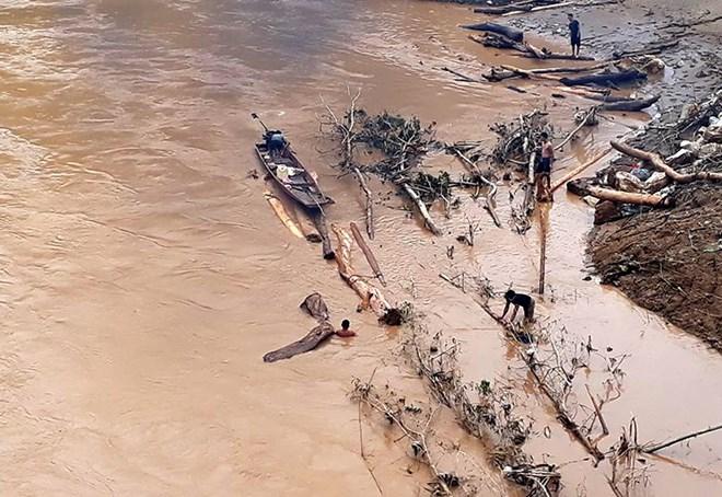 Người dân chấp nguy hiểm ra sông vớt củi, gỗ. (Ảnh: Nguyễn Nam/TTXVN)