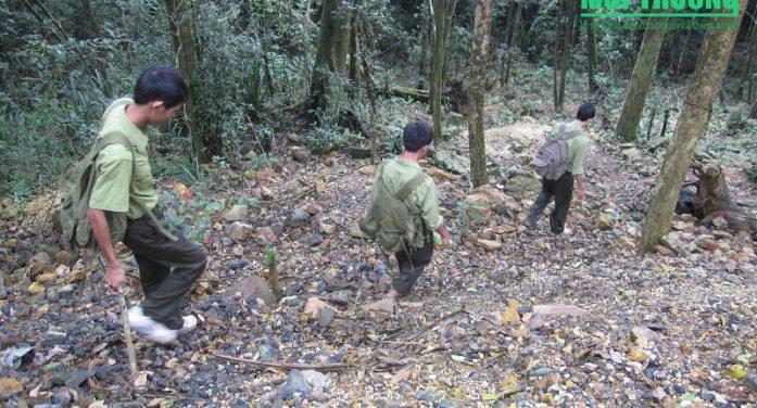 Chuyển hạt kiểm lâm VQG sang trực thuộc Chi cục Kiểm lâm sẽ mất rừng
