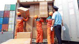 """Phát hiện hàng loạt vụ """"trộn"""" ngà voi, vảy tê tê trong hàng nhập khẩu"""