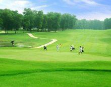 Đất lúa năng suất thấp làm sân golf: Lo bị lợi dụng