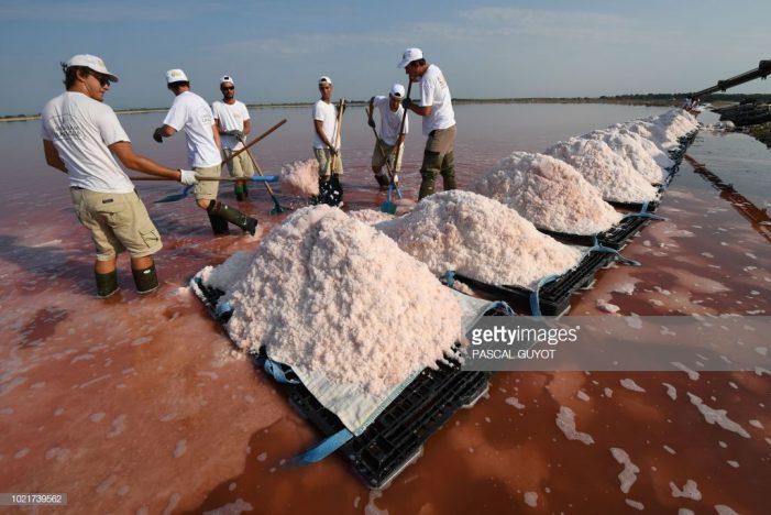 90% muối ăn chứa hạt vi nhựa