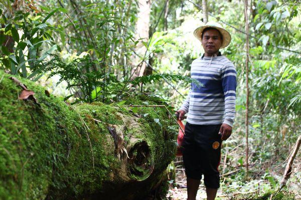 """Trám '""""lỗ hổng"""" Luật, giúp dân sống cùng rừng"""