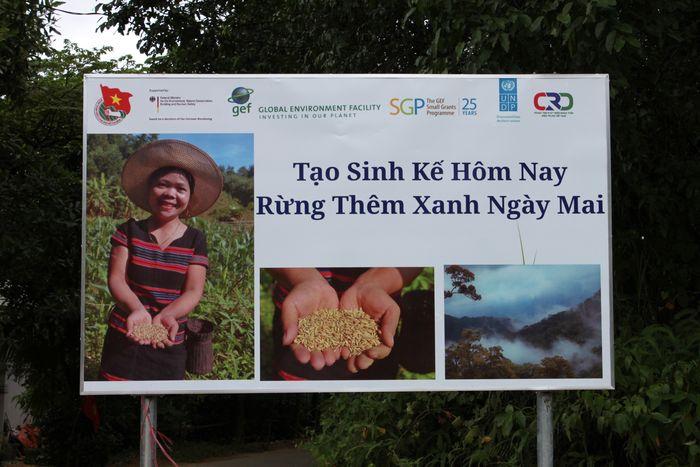 Thiết lập cơ chế chia sẻ lợi ích thông qua hợp tác quản lý bảo vệ rừng và phát triển sinh kế cộng đồng