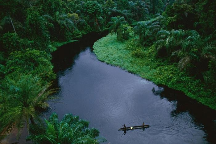 Một tỷ USD từ Quỹ Wyss hỗ trợ được gì cho bảo tồn?