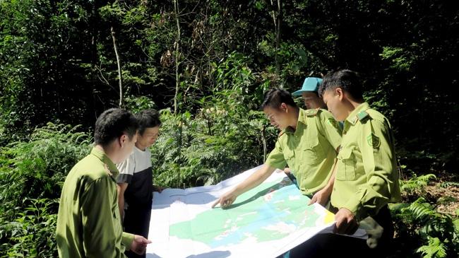 Cách làm hiệu quả trong bảo vệ rừng ở huyện Lâm Bình