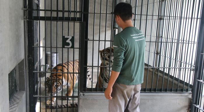 Làm bạn với động vật hoang dã