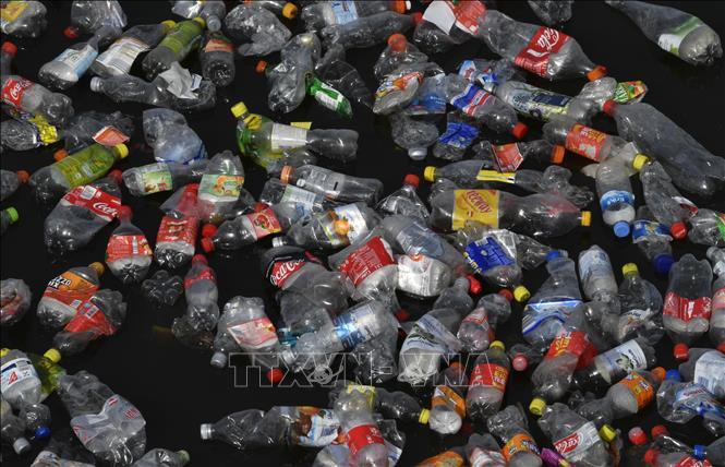 LHQ cảnh báo năm 2050 đại dương sẽ nhiều rác thải nhựa hơn cá biển