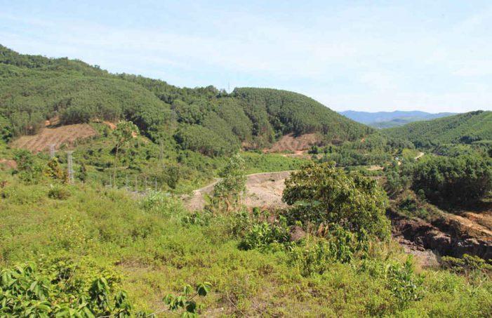 Thừa Thiên Huế: Tăng cường quản lý đất đai có nguồn gốc từ nông, lâm trường quốc doanh