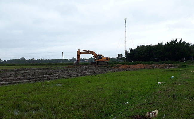 Chính quyền Quảng Ngãi 'phớt lờ' HĐND tỉnh, lấy hàng chục ha đất lúa