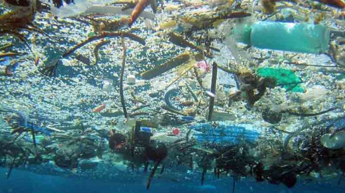 """""""Báo động đỏ"""" về ô nhiễm rác thải nhựa tại Biển Đông"""