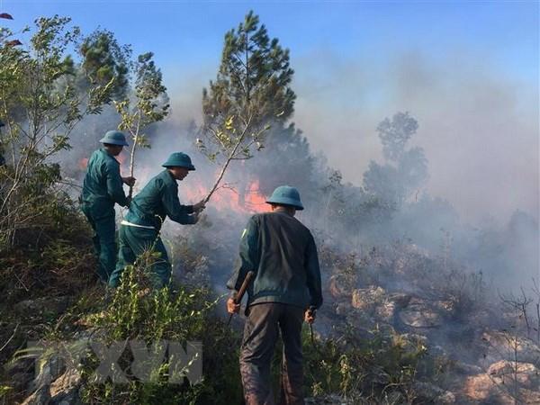 Huy động 120 người dập cháy tại Vườn quốc gia Hoàng Liên