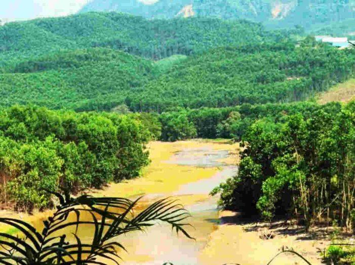 Quảng Nam: Yêu cầu Công ty TNHH MTV Hữu Minh chấp hành nghiêm việc phục hồi môi trường sau khai thác vàng gốc