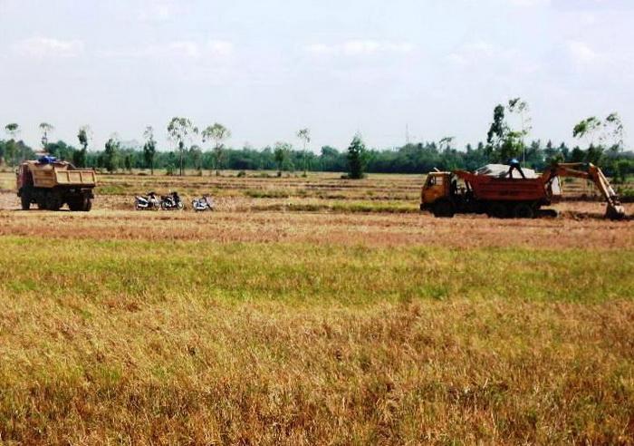 Sóc Trăng: Tăng cường kiểm tra, xử lý hành vi khai thác đất trái phép