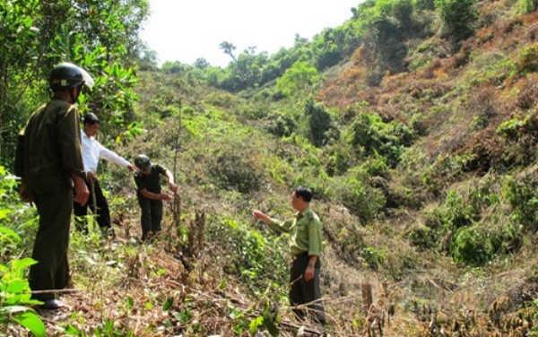 Chủ tịch UBND tỉnh Bắc Giang chỉ đạo bảo vệ rừng tự nhiên