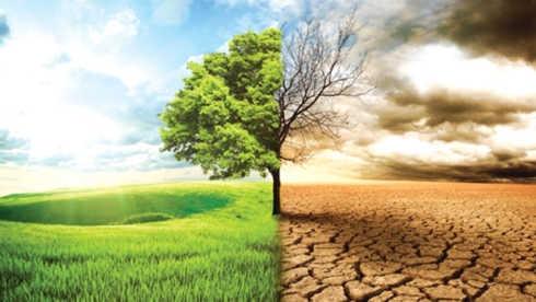 Phê duyệt và triển khai 42 đề tài cấp quốc gia về biến đổi khí hậu và quản lý tài nguyên môi trường