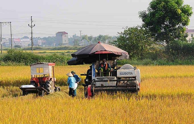"""Đồng bằng sông Cửu Long thích ứng với biến đổi khí hậu: Cơ khí hóa – """"chìa khóa"""" của nông nghiệp"""