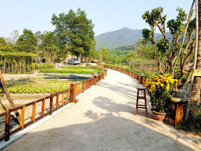Quảng Nam: Tháo dỡ khu nghỉ dưỡng trong rừng phòng hộ trước ngày 15/3