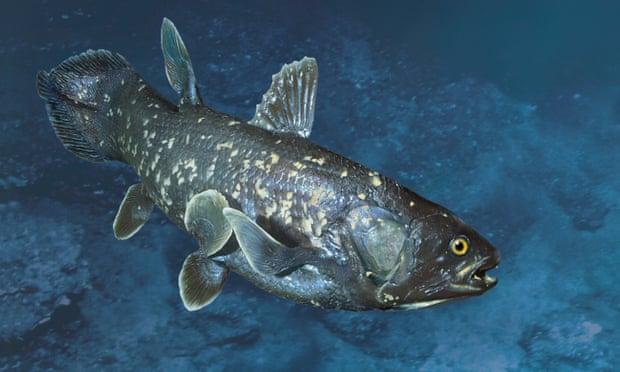 5 loài trở về từ bờ vực tuyệt chủng