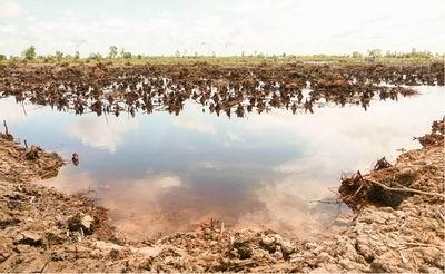 Nghiên cứu xâm nhập mặn trong các tầng chứa nước ở Cà Mau, Bạc Liêu