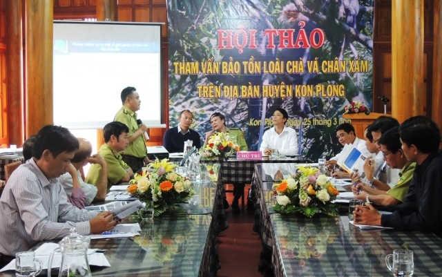 Bảo tồn loài Voọc chà vá ở KonPlông, Kon Tum