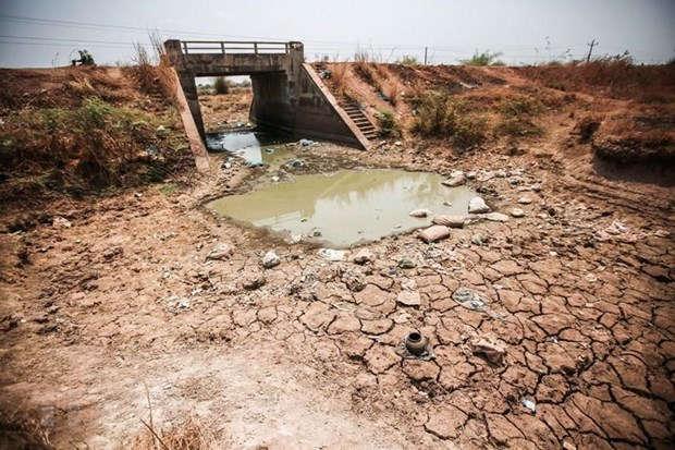 Hơn 67.000 ha có khả năng bị hạn hán, xâm nhập mặn nếu không có mưa