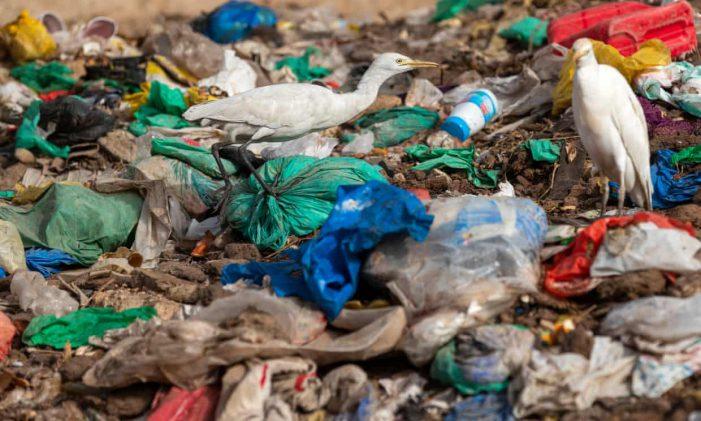 Nghị viện châu Âu thông qua lệnh cấm đồ nhựa dùng một lần