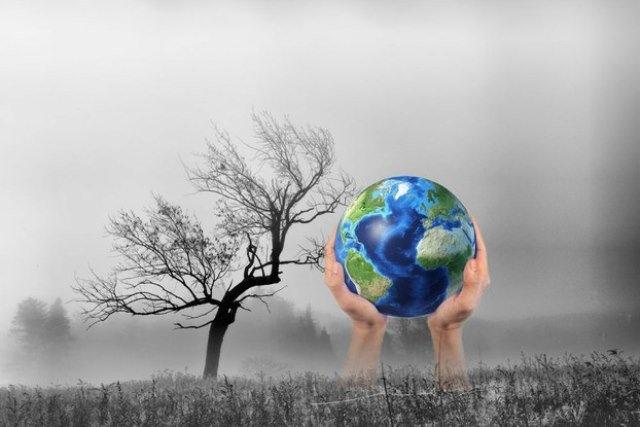 Xây dựng năng lực ứng phó biến đổi khí hậu và xuống cấp môi trường
