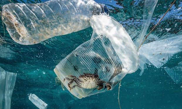 Ô nhiễm nhựa biển gây thiệt hại 2,5 tỷ USD mỗi năm