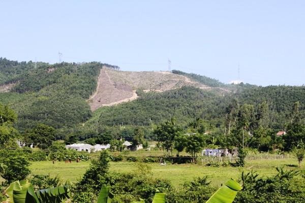 Mỗi tháng xảy ra 829 vụ vi phạm bảo vệ, phát triển rừng