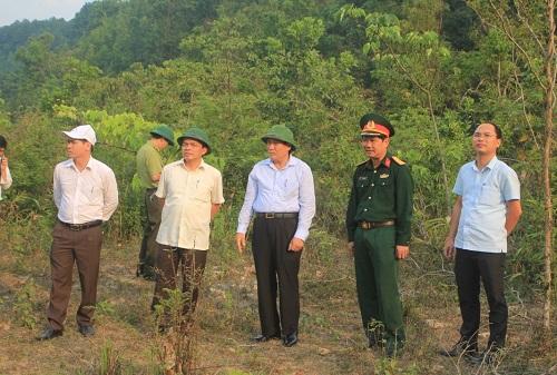 Quảng Trị: Chuyển đổi rừng phòng hộ ít xung yếu sang quy hoạch phát triển sản xuất