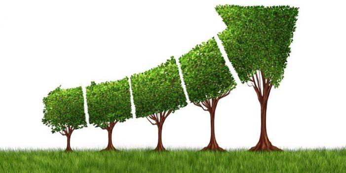 Đầu tư nước ngoài với tăng trưởng xanh