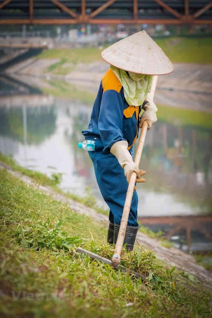 Những người dọn rác thầm lặng trên dòng sông Tô