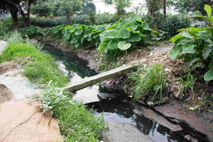 """Nước thải """"bủa vây"""" kênh thủy lợi"""