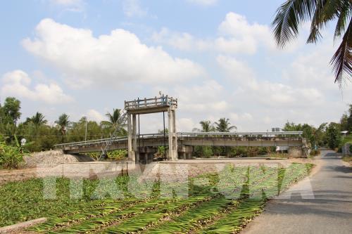 Dự báo mặn sẽ gia tăng ở Đồng bằng sông Cửu Long