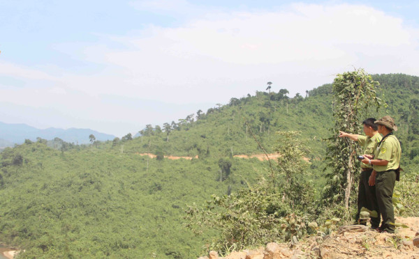 """47 tỷ tài trợ Dự án """"Dự trữ các-bon và bảo tồn đa dạng sinh học rừng"""""""