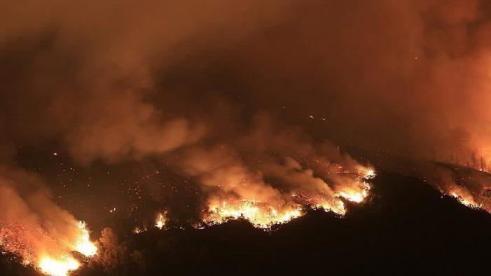Nam Sudan: Cháy rừng dữ dội, gần 100 người thương vong