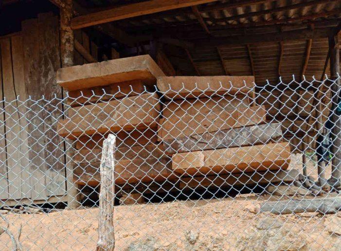Điện Biên: Thu giữ 82 hộp gỗ sập với khối lượng trên 18m3