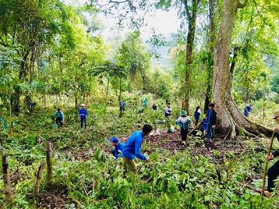 Ra quân phát động trồng 2.500 cây xanh tại thành phố Sơn La