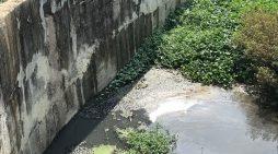 Quảng Ngãi: Trạm xử lý nước thải khu công nghiệp ô nhiễm nghiêm trọng
