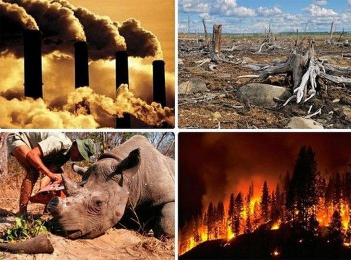 Trái đất đối mặt với tuyệt chủng nếu càng nóng lên và biến đổi khí hậu gia tăng: Nhân loại đang ở giữa Cuộc Đại tuyệt chủng lần thứ 6?