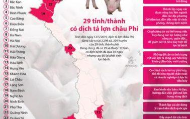 29 tỉnh/thành có dịch tả lợn châu Phi