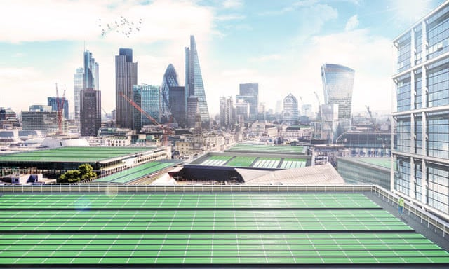 Công nghệ lá quang sinh học giúp lọc sạch không khí