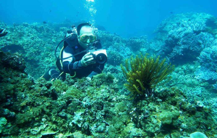Trầm tích lòng biển miền Trung đang bị đe dọa