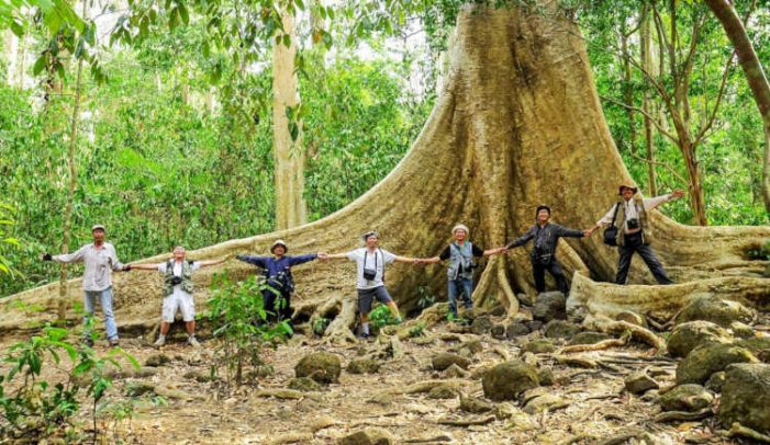 Kỳ thú Vườn quốc gia Cát Tiên