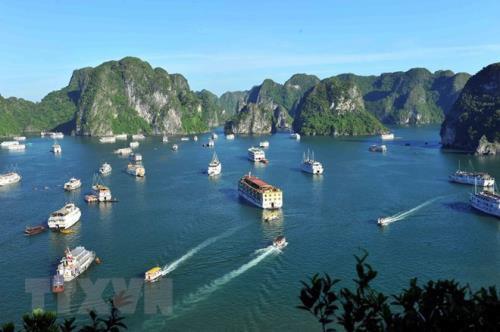 Phê duyệt Báo cáo đánh giá tác động môi trường hai dự án trên vịnh Hạ Long