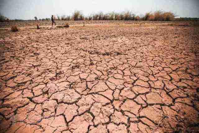 Hạn hán, thiếu nước đe dọa hàng chục ngàn héc-ta cây trồng