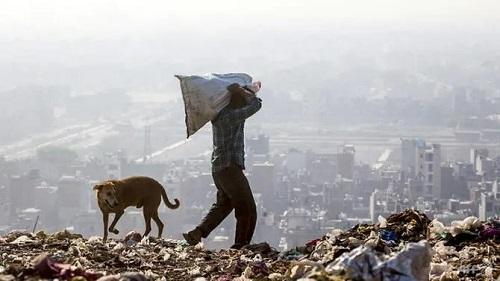 Núi rác tại New Delhi sắp cao hơn 70 mét