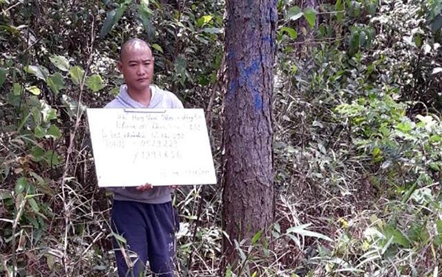 Bắt thêm một đối tượng vụ đầu độc hơn 10 ha rừng thông